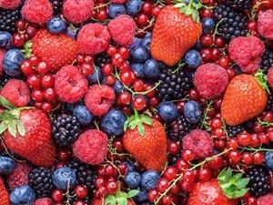 variedad de frutos rojos
