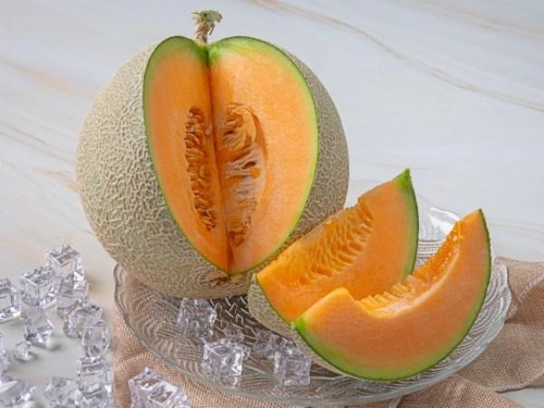 melon cantalupe