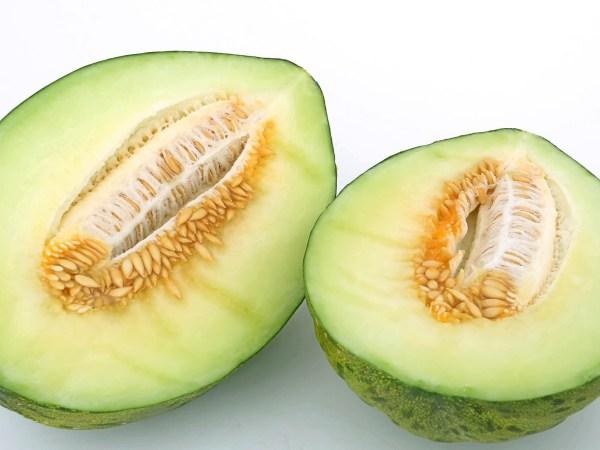 "melon tendrál o ""piel de sapo"""