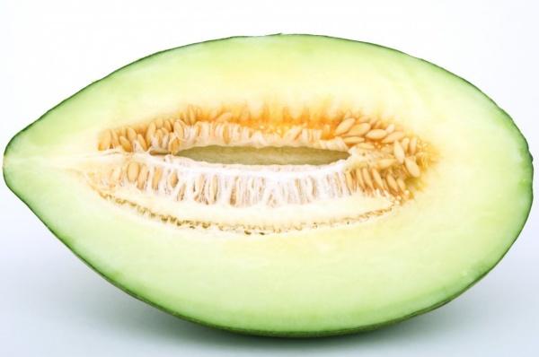 melon español piel de sapo